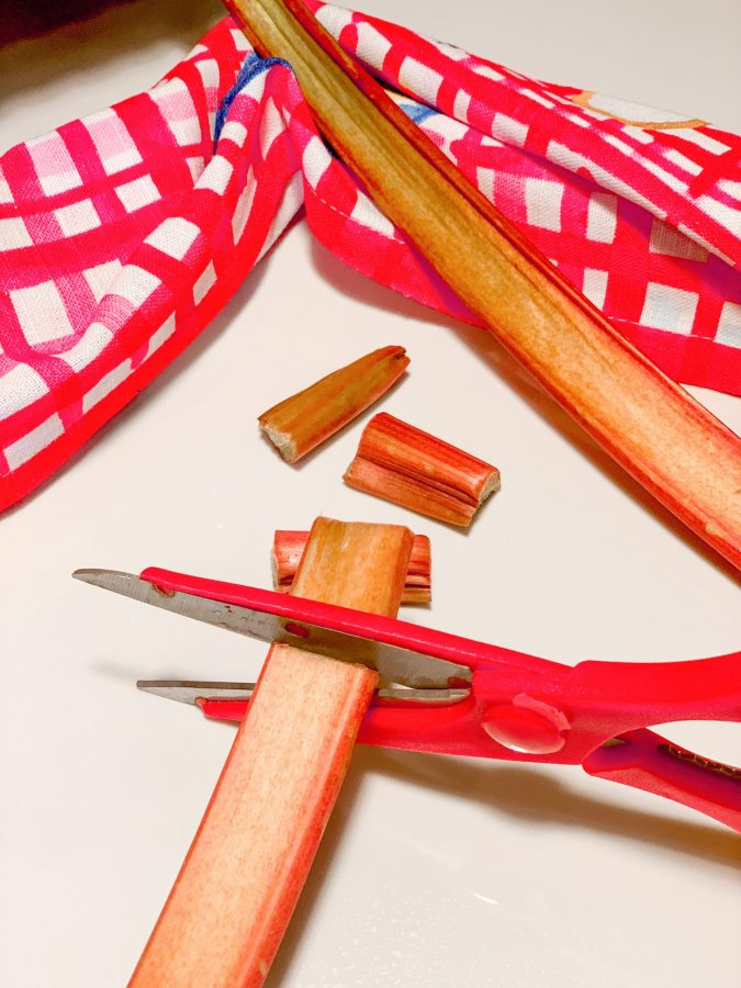 Rhubarb stalks are cut best with kitchen shears. Do you know what rhubarb is?