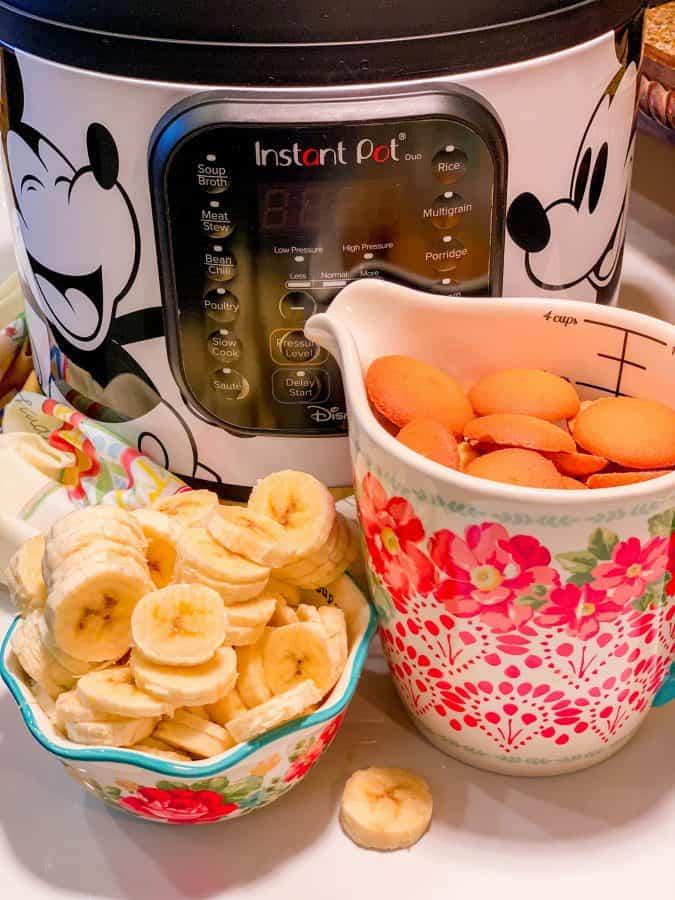 Instant Pot Banana Pudding