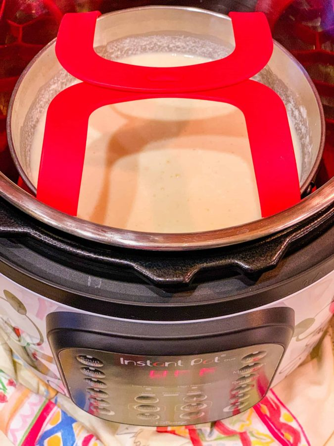 Instant Pot Pudding