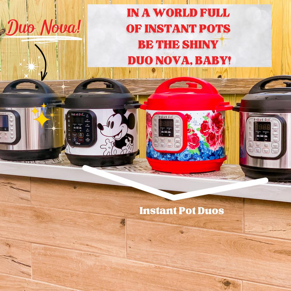 Best Instant Pot Comparison Guide - Duo vs. Duo Nova