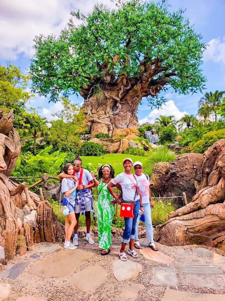 You Can Find Dole Whip At Walt Disney World Animal Kingdom